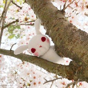 千本桜サムネ