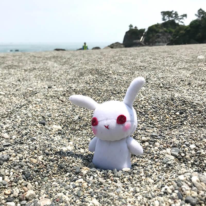砂浜が、砂利??