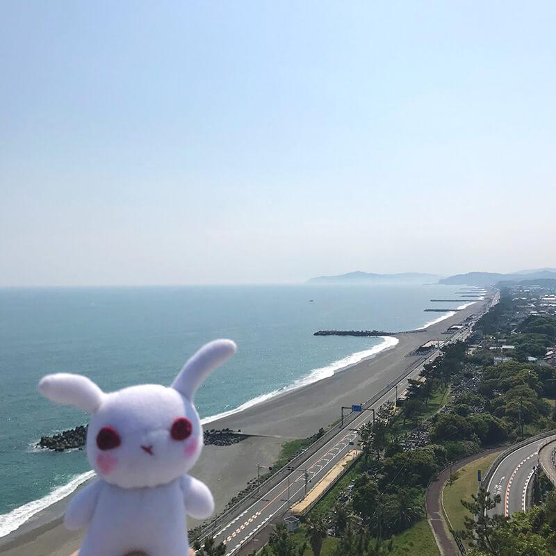 葵ちゃんと太平洋